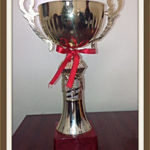 Football championship of Cihan University-Erbil