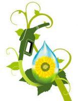 Biofuel -seminar