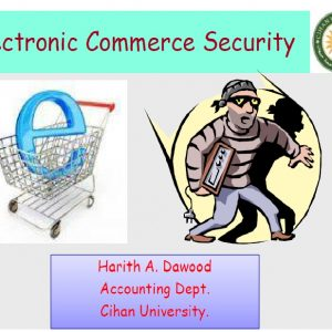Seminar on E-commerce security issues