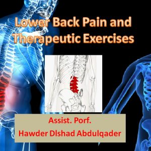 Lower Back Pain and Therapeutic Exercises, seminar by Asst.Prof Hawder Dlshad