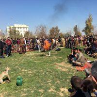 Newroz Festival
