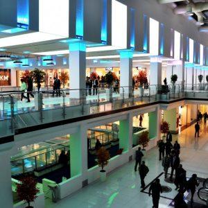 Scientific Trip – Interior Design V – Commercial