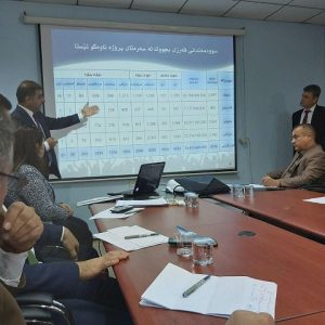 Participating in a workshop at the Ministry of Labor